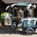 Wedding Ice Cream Bikes